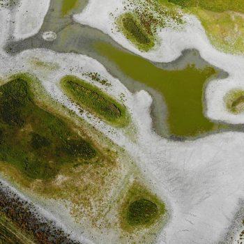 Droogte in de polder